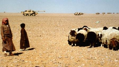 27 Enfants de bedouins